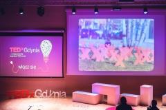 TEDx (20)